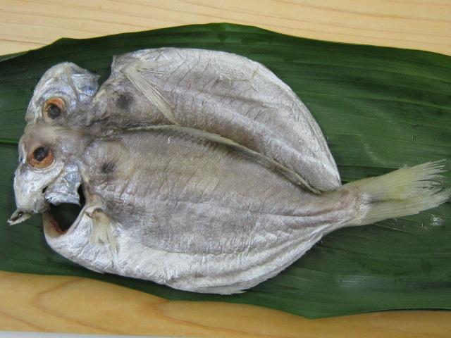 画像2: えぼ鯛