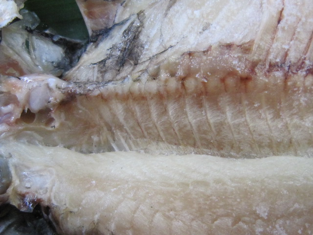 画像4: えぼ鯛
